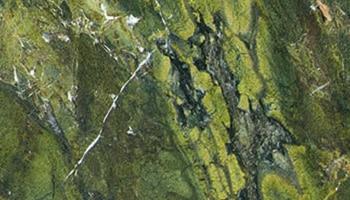 Garagentor Motiv Digitaldruck - Verde Fantastico
